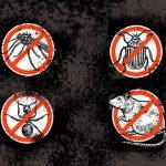7-formas-de-controle-de-pragas-em-ambientes-comerciais