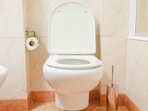 foto de uma privada vista de forma fornta com papel higiênico ao lado