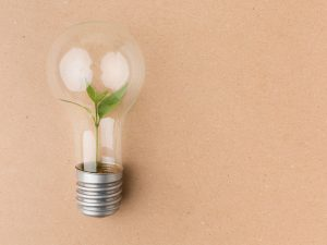Quais são os produtos ecologicamente corretos CORPO blog_opt