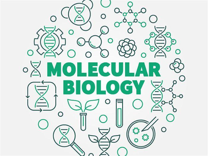 Símbolo de biotecnologia mesclando plantas e equipamentos de ciência em uma arte gráfica