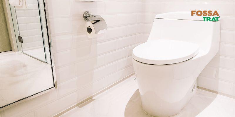 5 dicas simples para acabar de vez com o mau cheiro do vaso sanitário